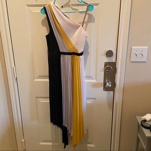 BCBG Plisse color block dress